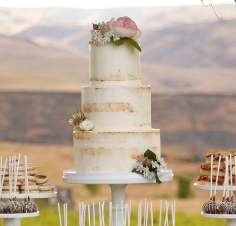 Nearly Naked Wedding Cake  (flowers not included)