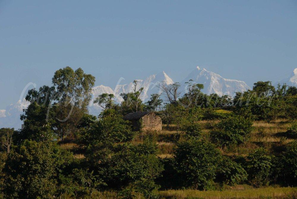 near Bandipur