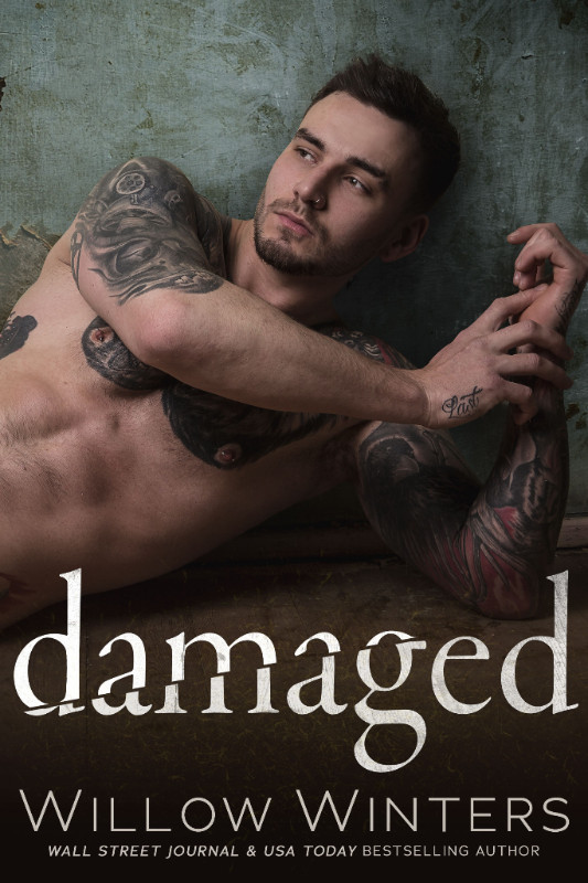 Damaged by Willow Winters.jpg
