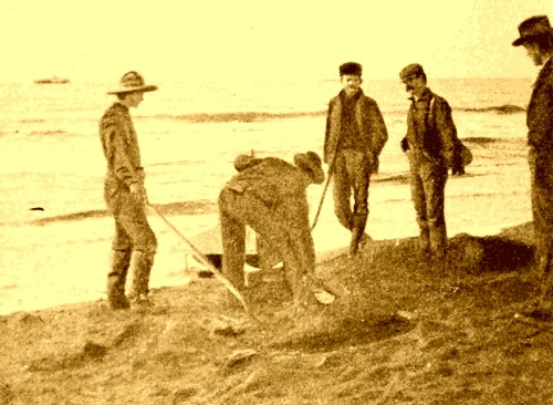 Florida-Treasure-Hunt-Unclaimed-Funds-Digging-for-Gold.jpg
