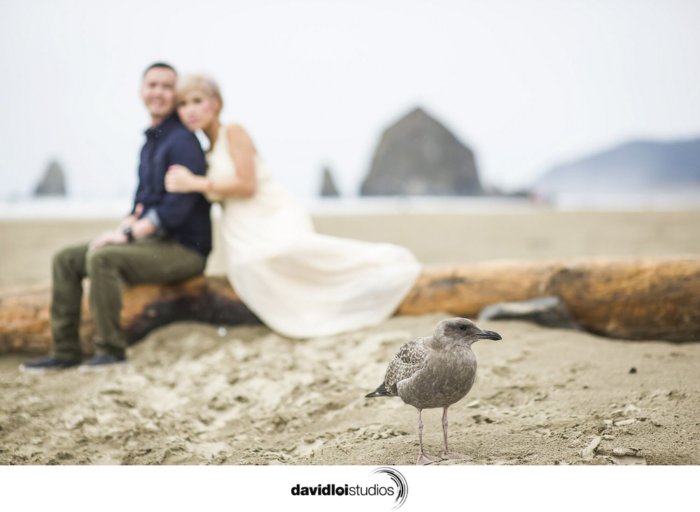 Cannon Beach Engagement Portland OR  (4 of 54).jpg