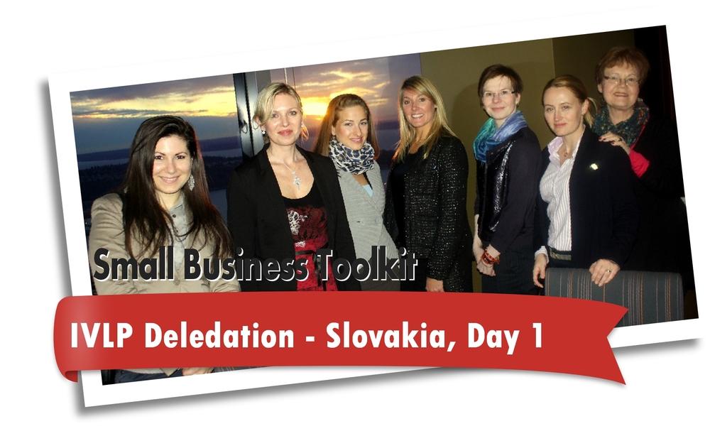 IVLP Slovakia Mini.jpg
