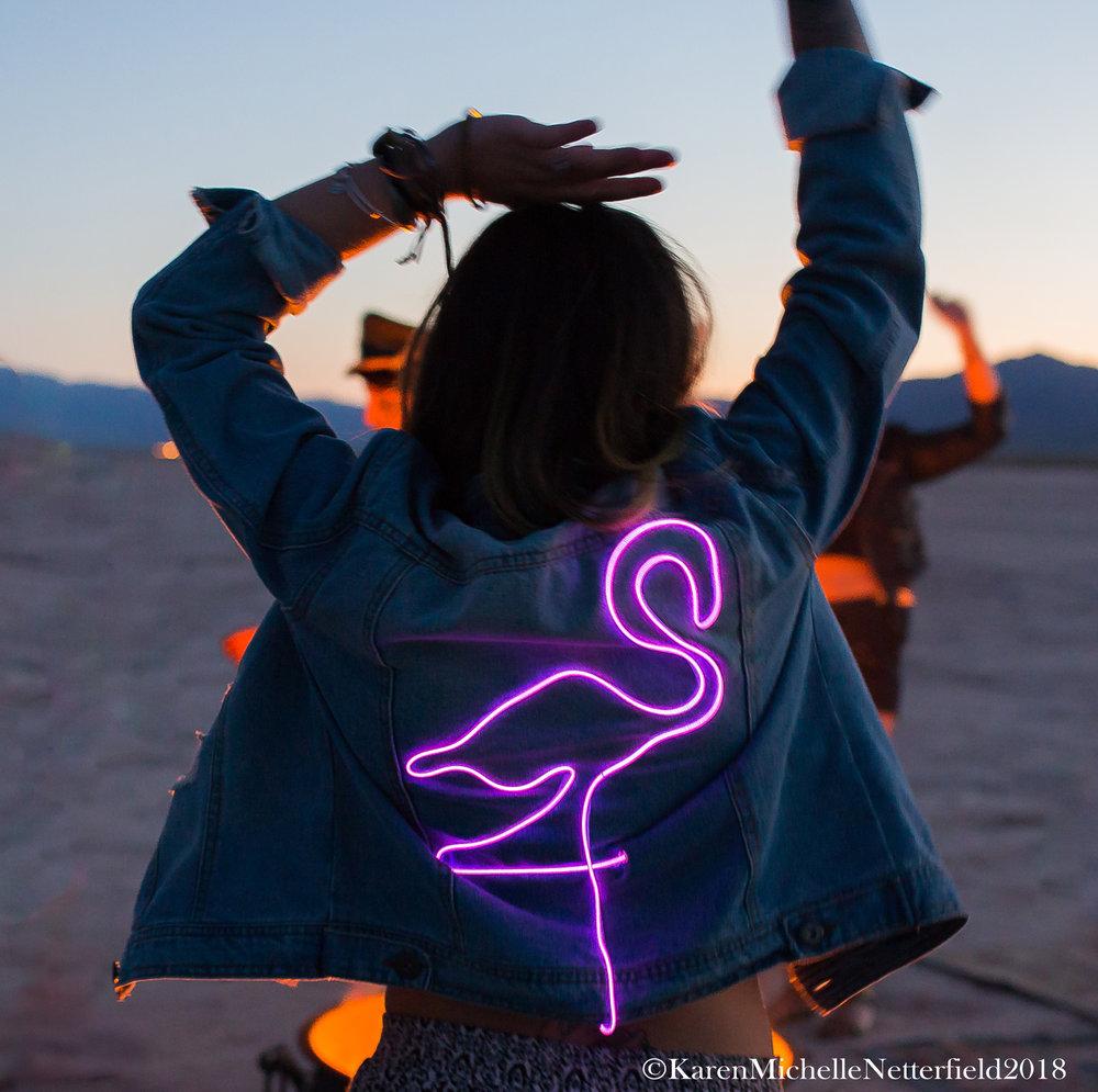 Flamingo._Jacket_Desert_Lake_Bed©KarenMichelleNetterfield2017.jpg
