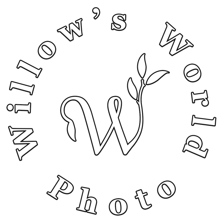 Willow's World Photo