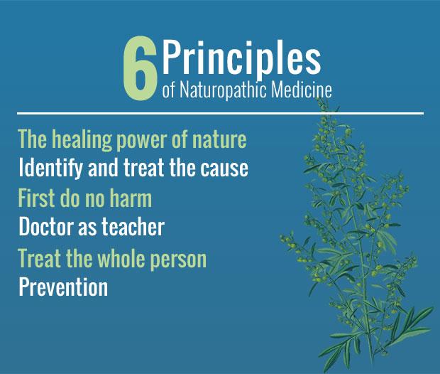Naturopathic Principles.jpg