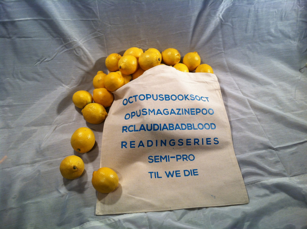 You want to buy books from us at the  Octopus Books  table in Boston next week. You want to buy this tote bag that Drew Swenhaugen and Nick Van Eck designed and screen-printed. You need a bag for your organic lemons. You need an iron for your brand new linens.