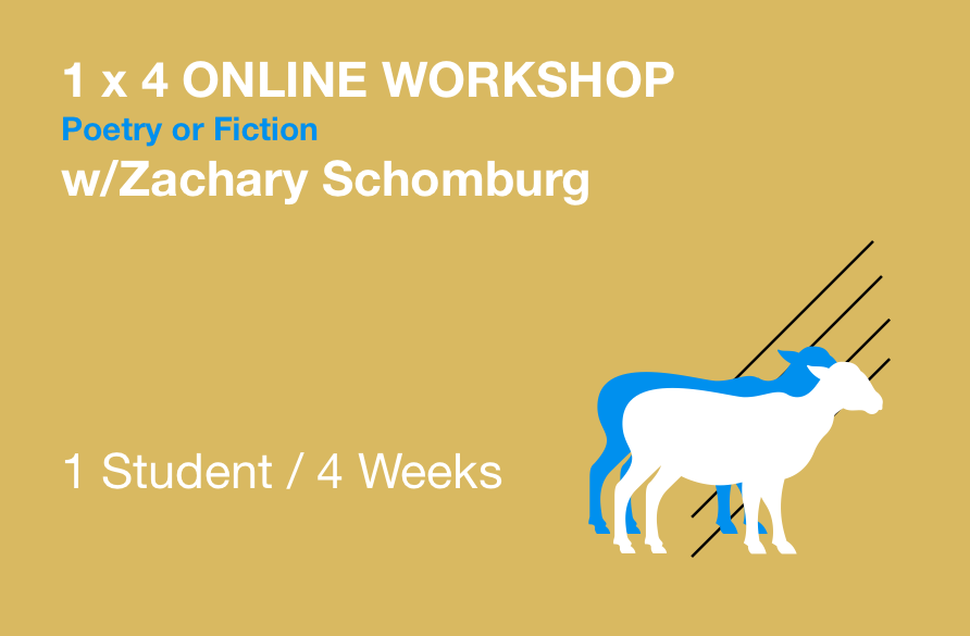 .. - Poetry or Prose WorkshopOne on one via Google Hangouts/Docs$250Read more here.