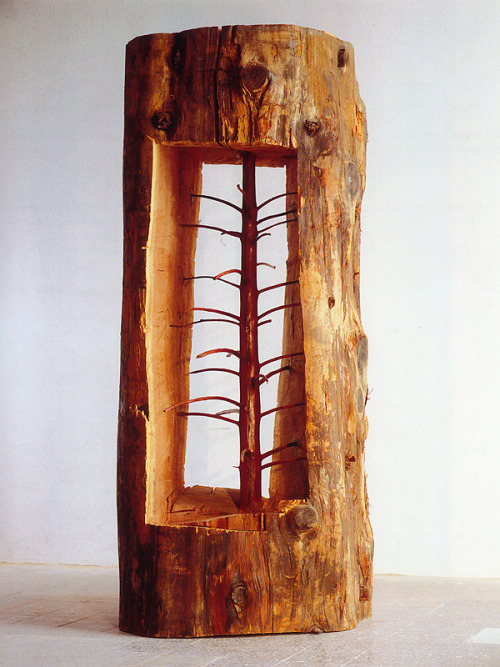 "lylaandblu :     In The Hidden Life Within, Italian artist  Guiseppe Penone  carves out a young tree with an older tree to reveal its past, showing us what once grew inside so that it may now ""live in the present."""