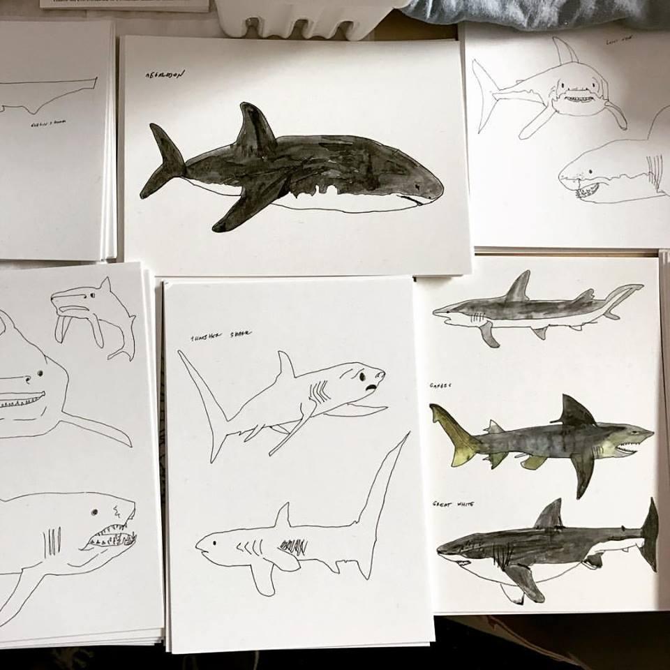 Shark postcards by  Melinda Melmoth