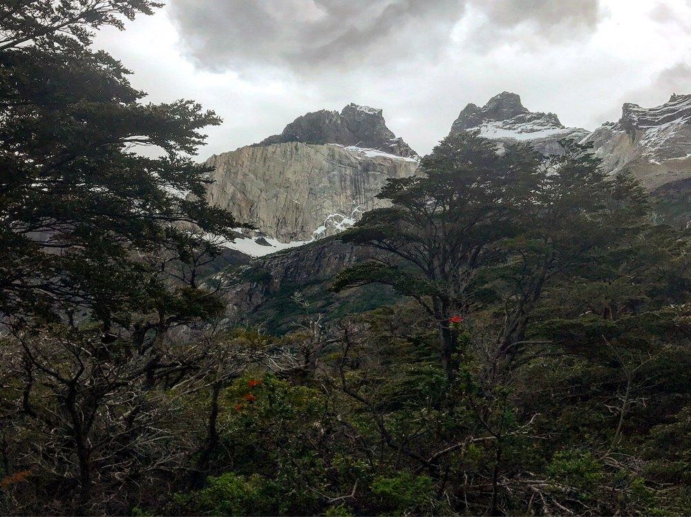 Los Cuernos Patagonia.JPG