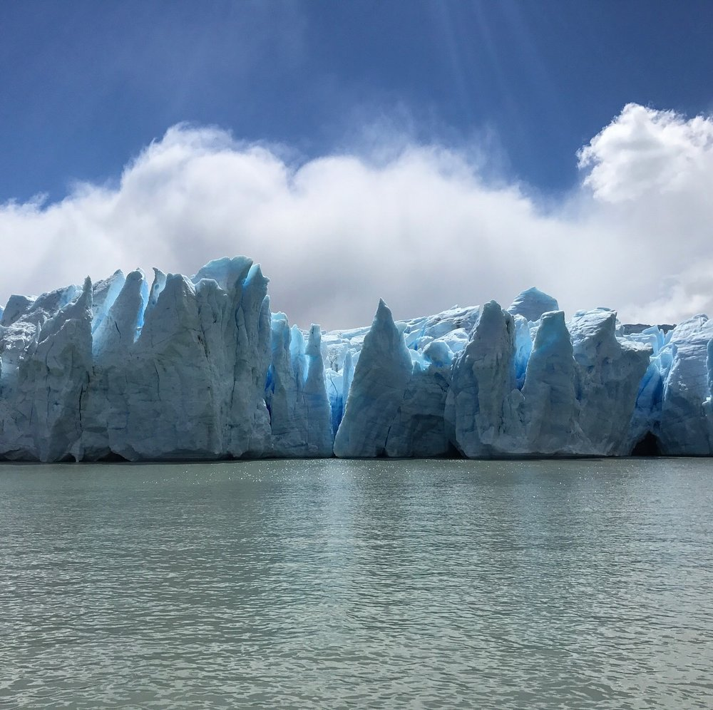 Grey Glacier.JPG