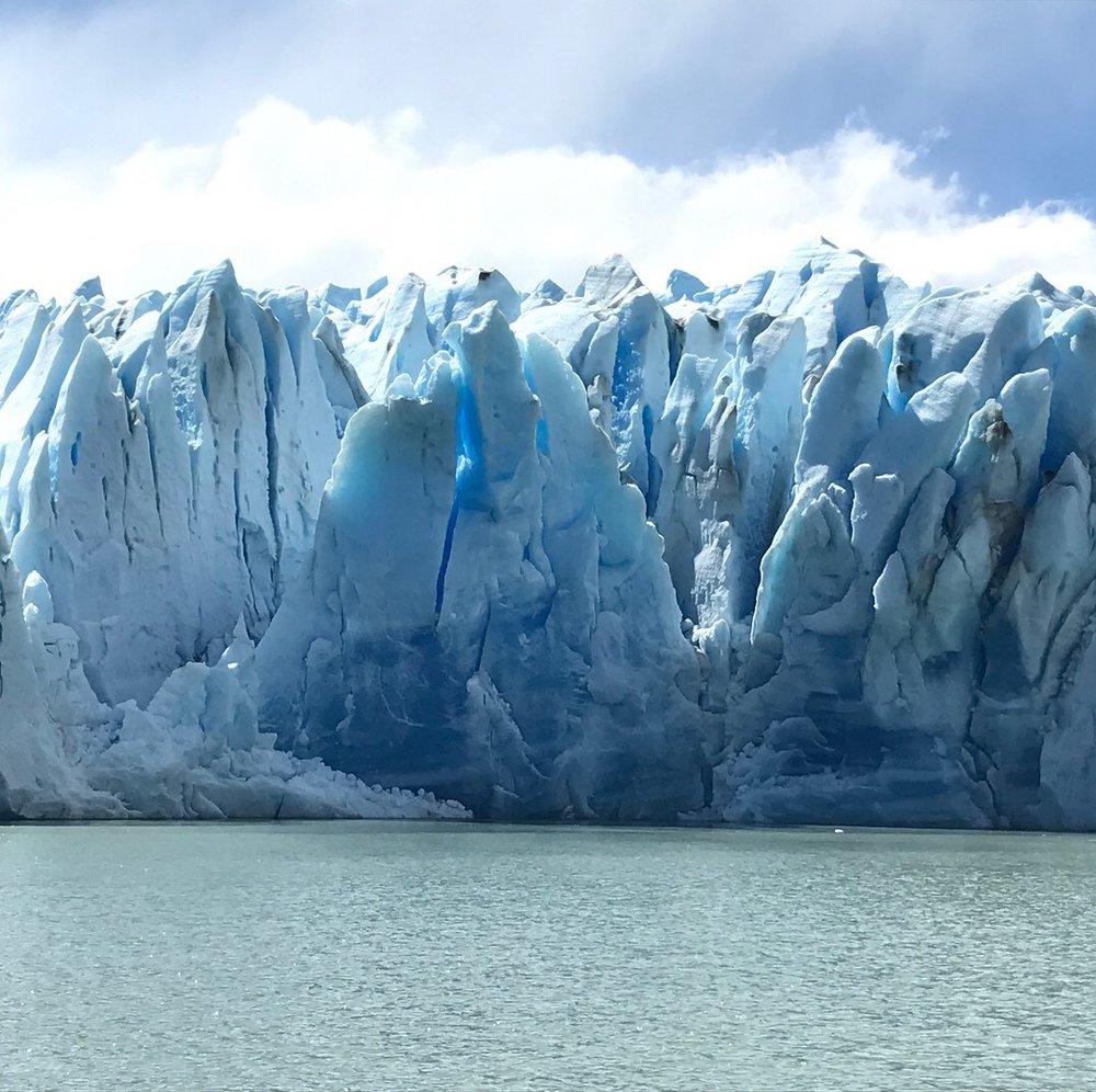 Grey Glacier 2.JPG