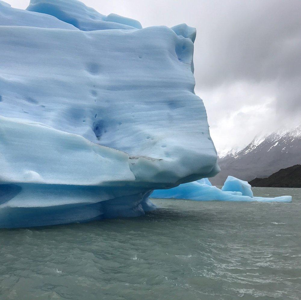 Grey Glacier iceberg 1.JPG