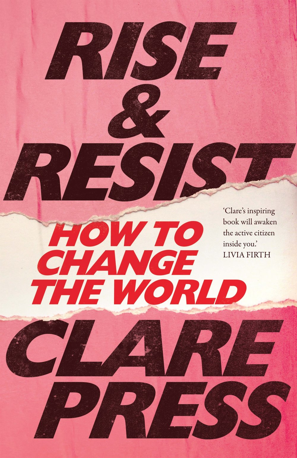 Cover of Rise and resist