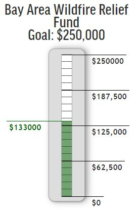 This is what our fundraising thermometer looks like. It shows the total goal at the top, and your progress towards the goal in the green mercury. As donations come in, you can refresh the page and the thermometer will update.