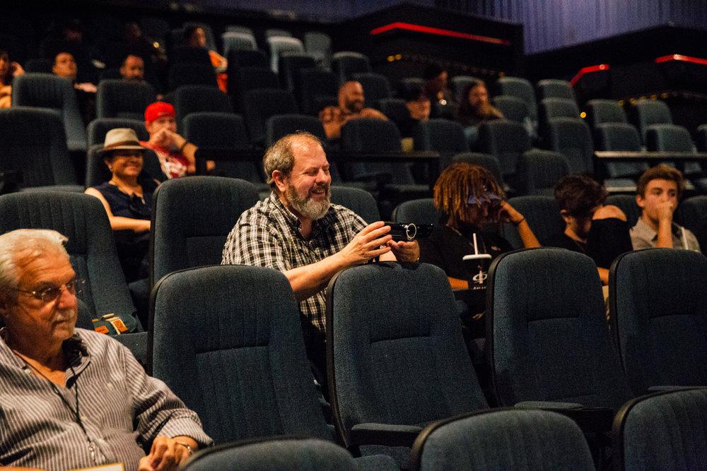 IDTVAF audience