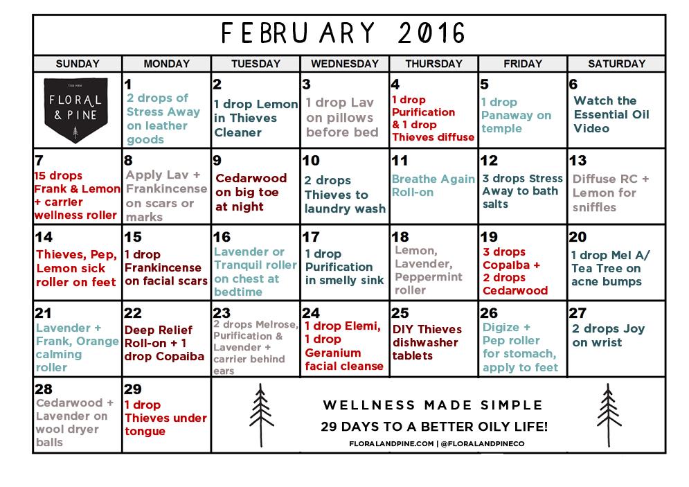 february-2016 copy.jpg
