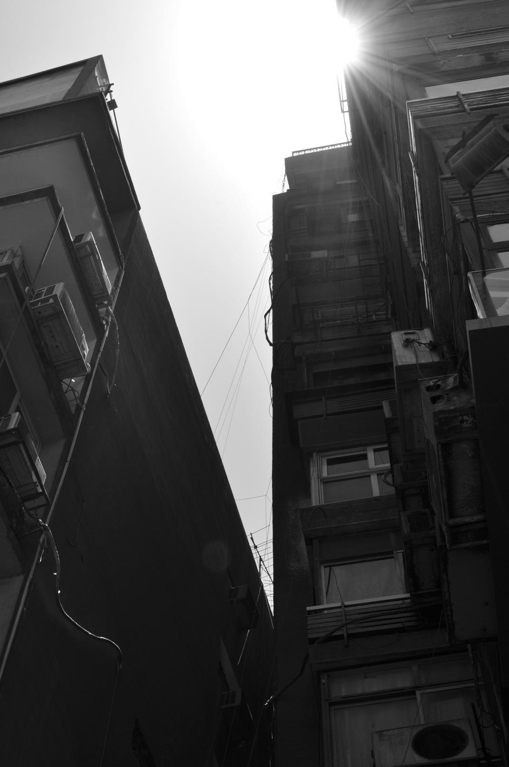 Sunlit, Cairo 2013