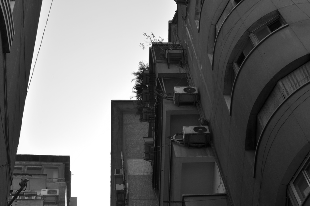 Curve, Cairo 2013