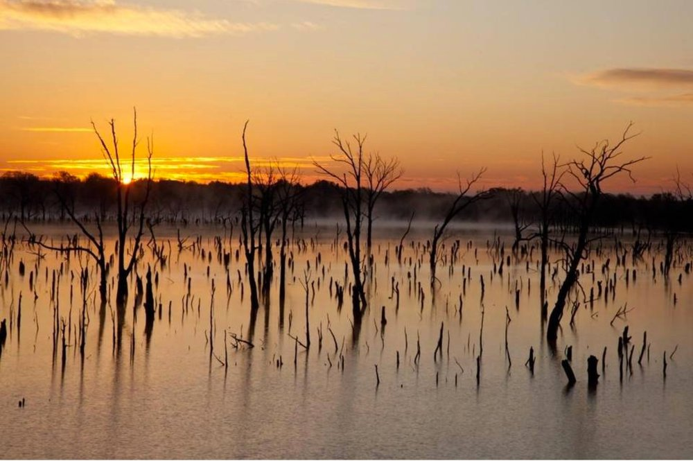 Photograph by Larry Schwarm:  El Dorado Lake at Sunrise.