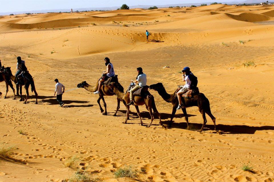 <p><strong>Morocco</strong><a href=/morocco> →</a></p>