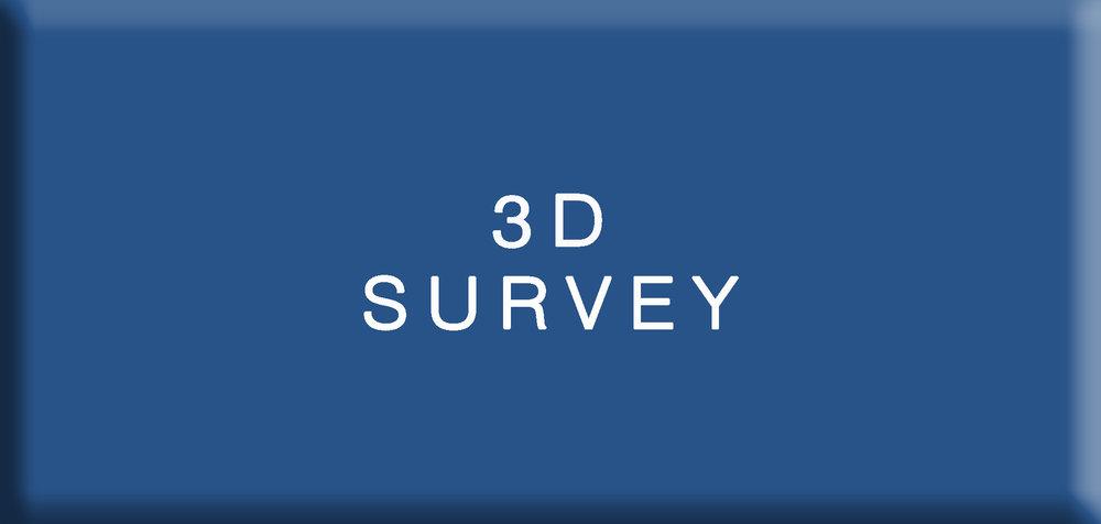 3D SURVEY1.jpg