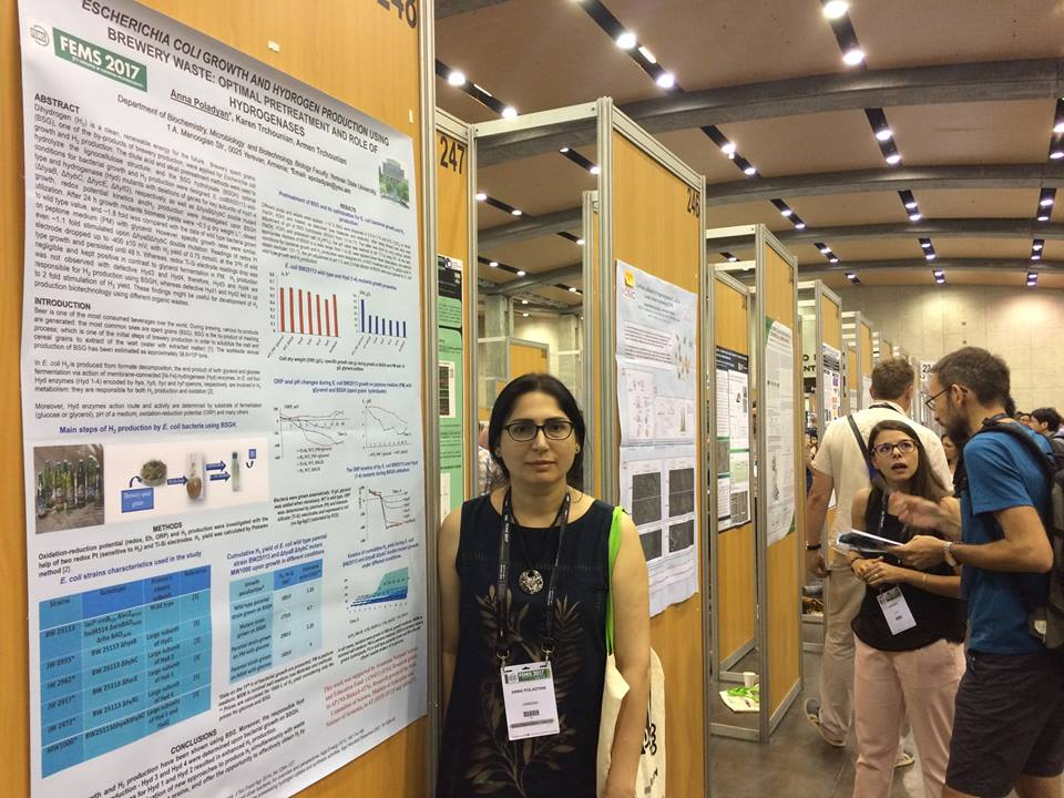 6 PI Anna Poladyan in FEMS congress 2017 with the poster on her research work.jpg