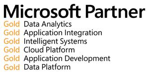 Microsoft Partner_png.png