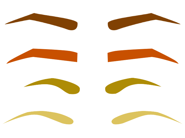 Shaped eyebrows in an array of designs and hair colors