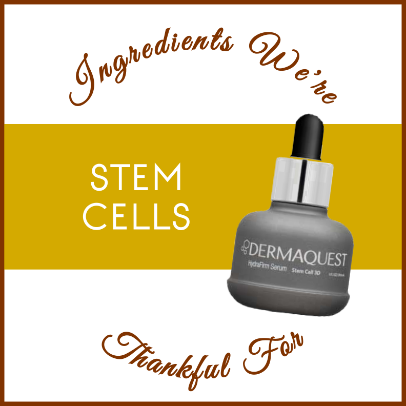 Stem cells in skincare