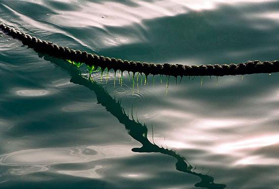 zakinthos rope.jpg