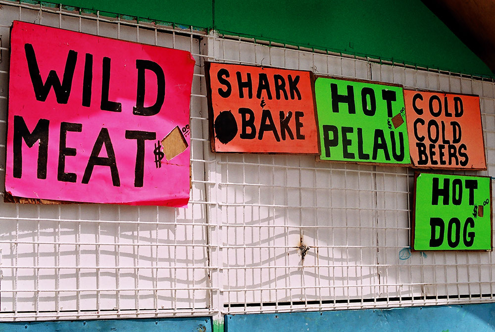 shark bake.jpg