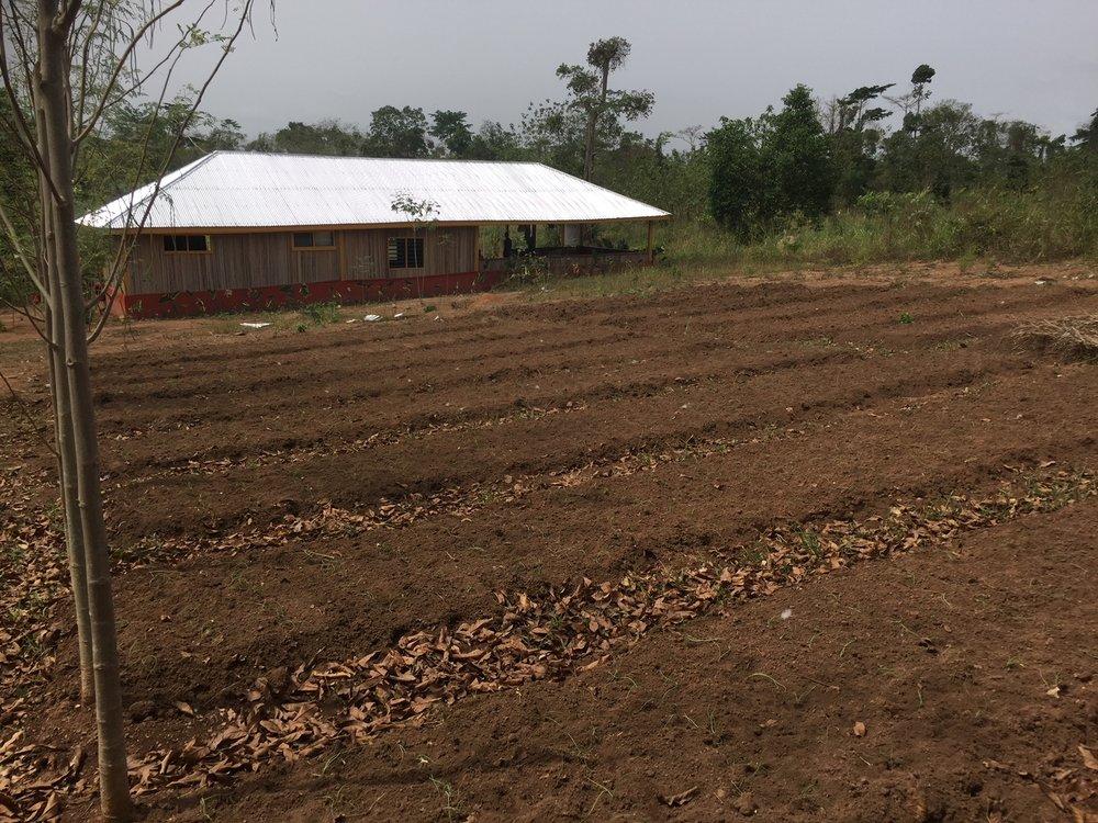 Farm 2.JPG