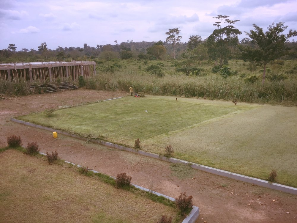 Central lawn.JPG