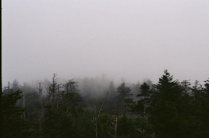 07-Fog01.jpg