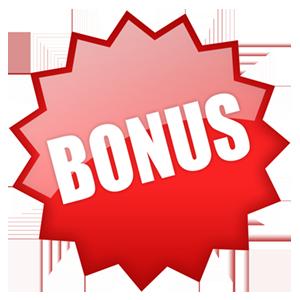 bonus_vector.png