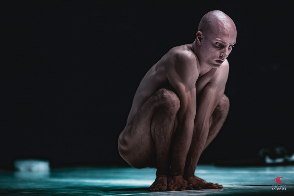Festival Ay Roop - Franck Boisselier Photographe spectacle