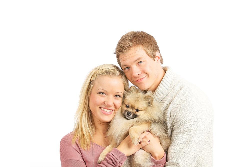 hund-hundefotograf-hundefotografering-fotograf-hodnedesign-pål-hodne (13).jpg