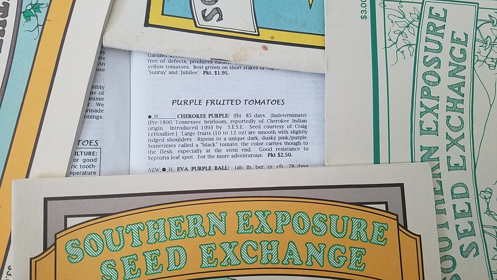 Listing of Cherokee Purple in the 1994 Southern Exposure Seed Exchange catalog...it was introduced the prior year (I no longer have that catalog, sadly)