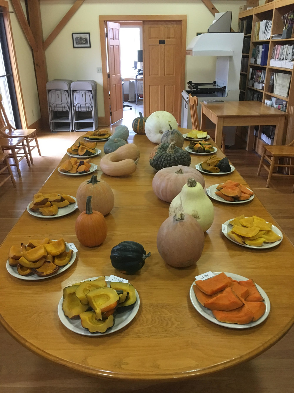 This year SSE Staff were able to sample 14 different kinds of squash from our seed vault. These, and many others, will be available in the 2019 Exchange and Yearbook.