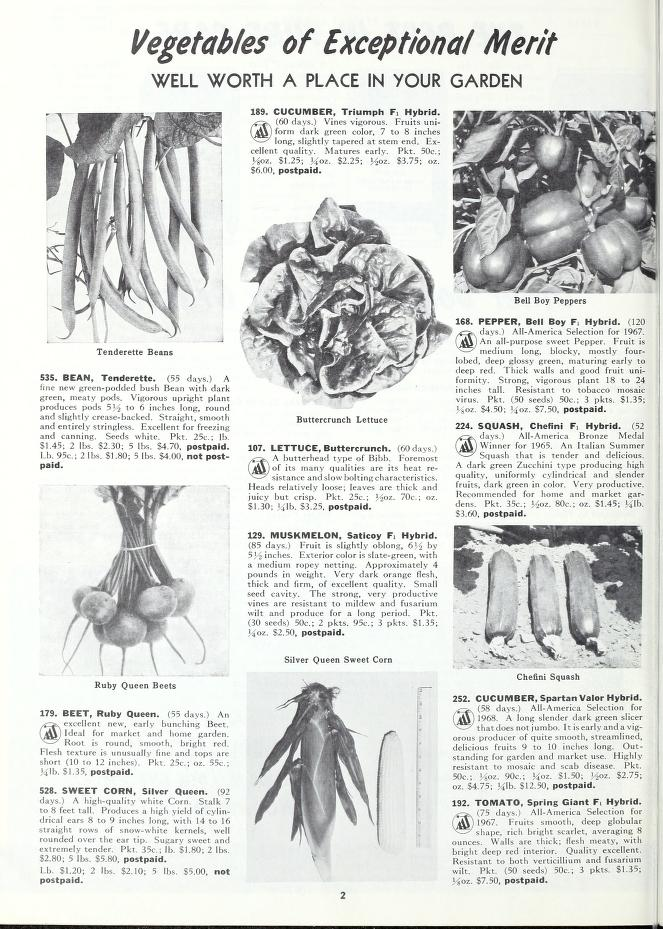 page from a 1970 Bolgiano seed catalog - note the featured hybrid tomato variety at lower right.