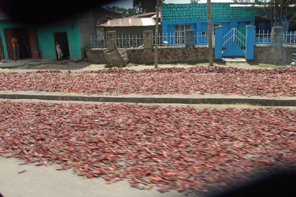 Drying Peppers on Remote Roads