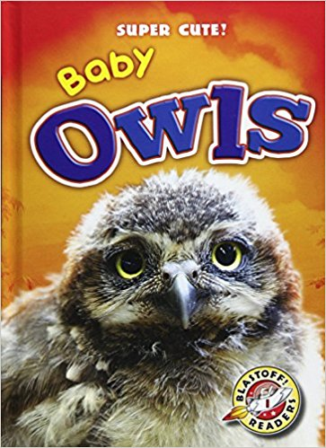 babyowls by christna leaf.jpg