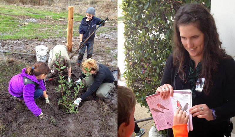students-planting-tree-student-book-teacher-800.jpg