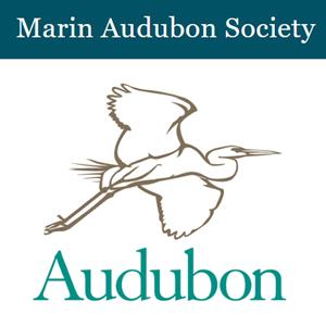 Marin-Audubon.jpg
