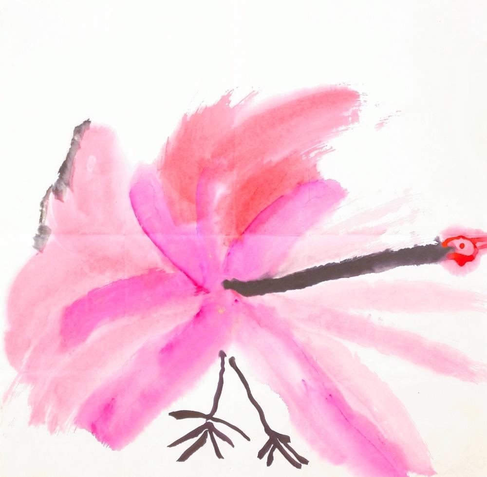 Flamingo, 1997