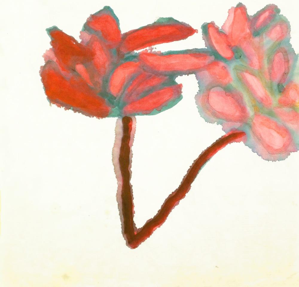 Lotus, 1996