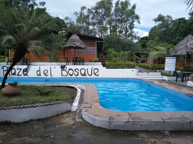 Swimming Pools of High Amazon - Plaza del Bosque