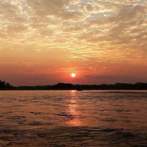 Mizen x 2 - Tambopata Research Center - Amazon Sunset.jpg