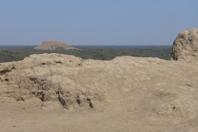 Pomac Dry Forest - View from Huaca to another.jpeg
